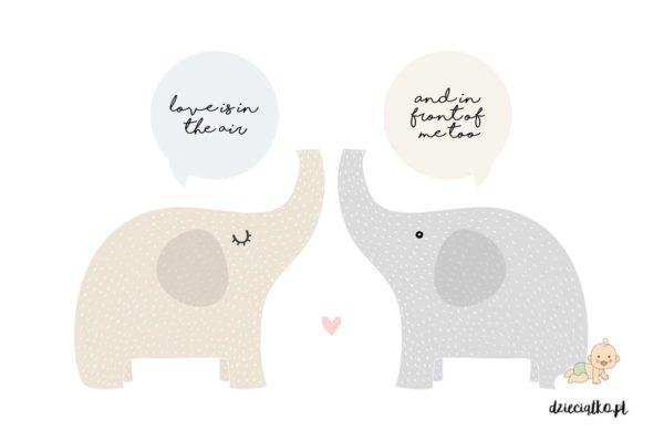 para zakochanych słoników - naklejki do pokoju dziecięcego