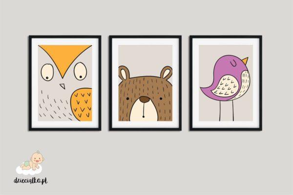 sowa niedźwiadek ptak - plakaty do pokoju dziecięcego